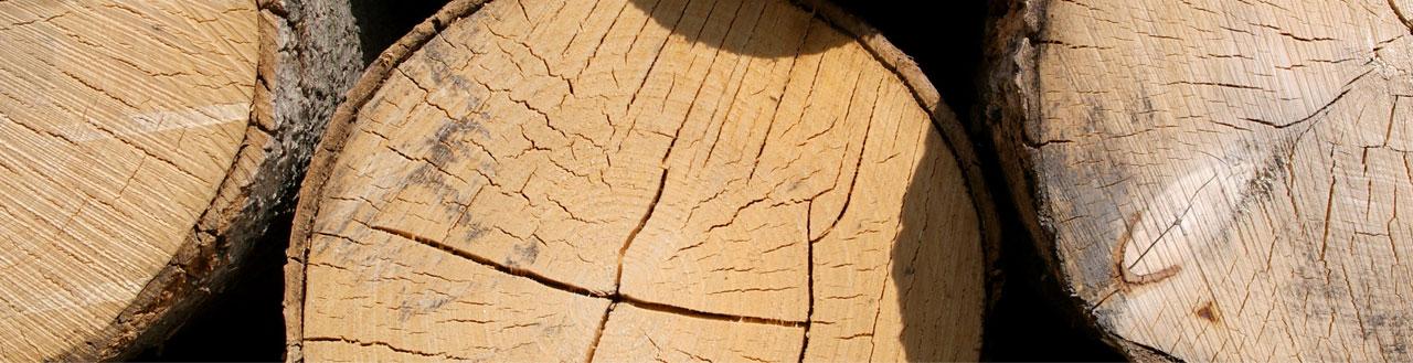 isolation toiture fibre bois
